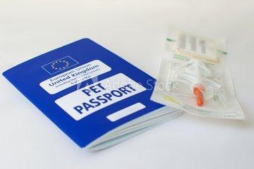 Una pregunta frecuente: Viajar fuera de la UE con mi perro,¿Qué necesito?
