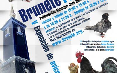 Feria de avicultura de Brunete